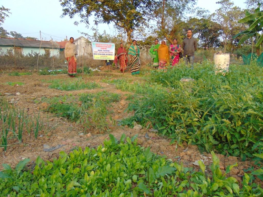 FLD-on-Nutritional-Garden